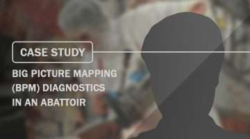 Case Study Big Picture Mapping BPM diagnostics in an abattoir