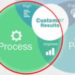 Process section of the enterprise excellence model