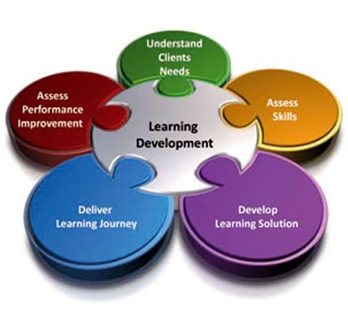 learning and development graphic showing circles