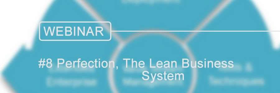 lean business system perfection
