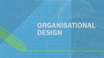 Organisation Design