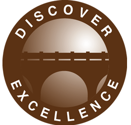 SHingo Discover excellence badge