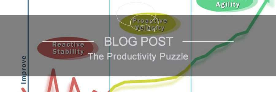 The Productivity Puzzle image