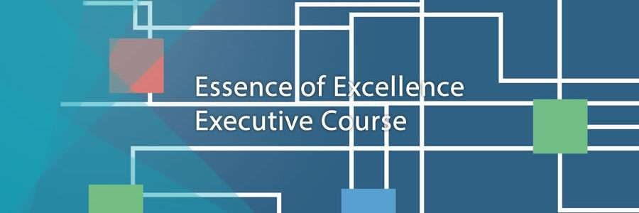 image of front book cover for Essence of Excellence