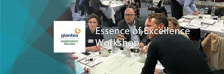 banner for the essence of excellence workshop